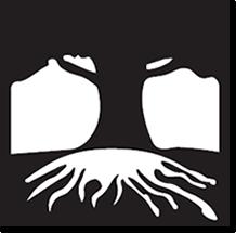DFI Logo
